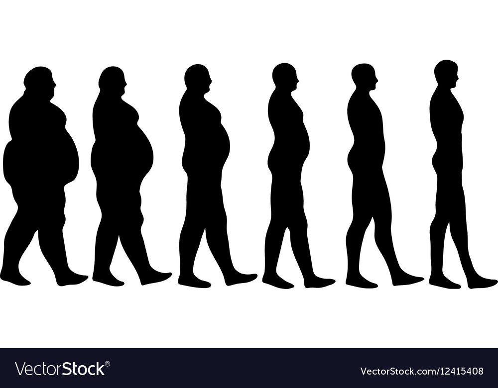 Losing weight steps vector image