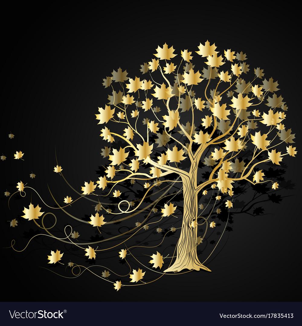 Gold maple tree