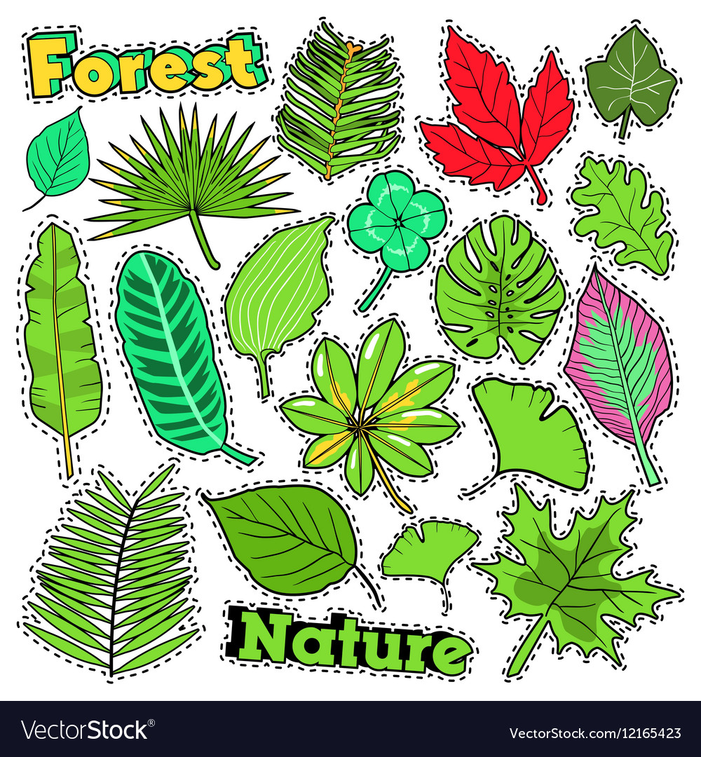 Nature Plants and Leaves Scrapbook Stickers
