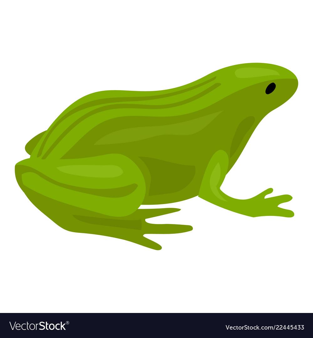 Green frog icon cartoon style