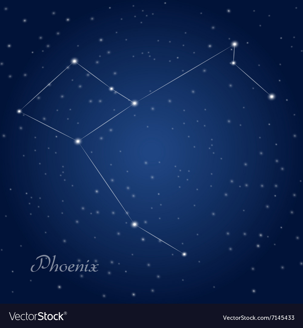 Phoenix constellation vector image
