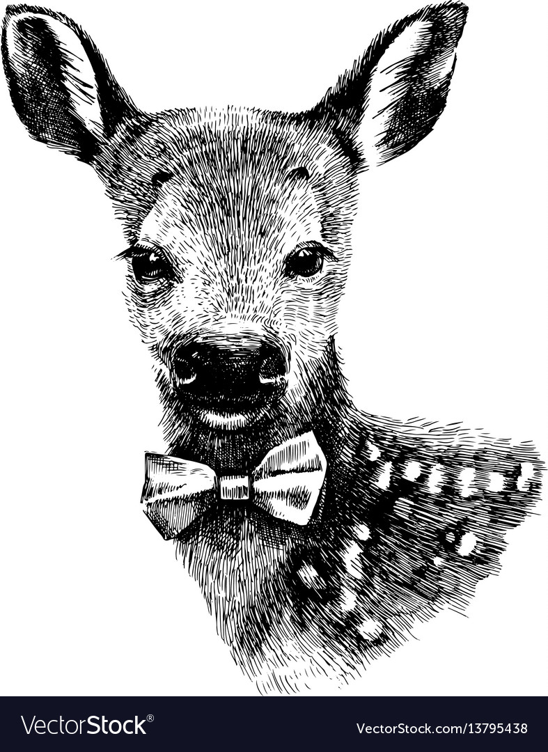 Baby deer hipster vector image