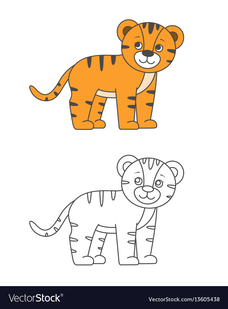 Tiger For Coloring Book
