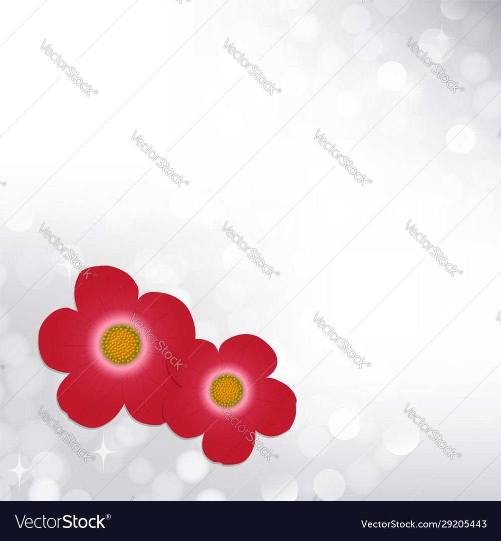 Spring silver bokeh background with red flowers