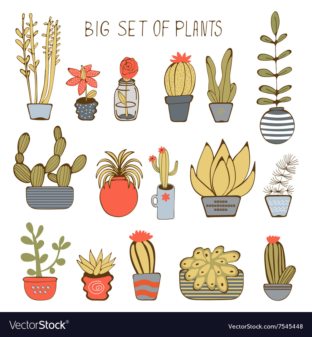 Big colorful set of hand drawn plants