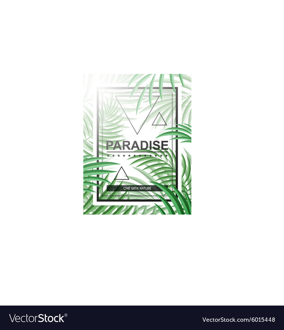 Exotic background with palm leaves and frame for