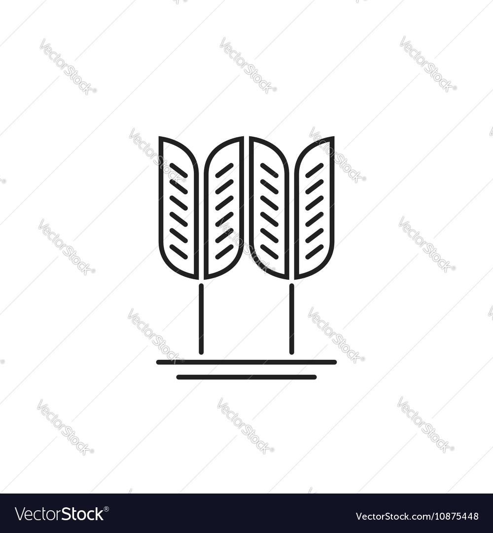 Wheat grain logo concept of organic food