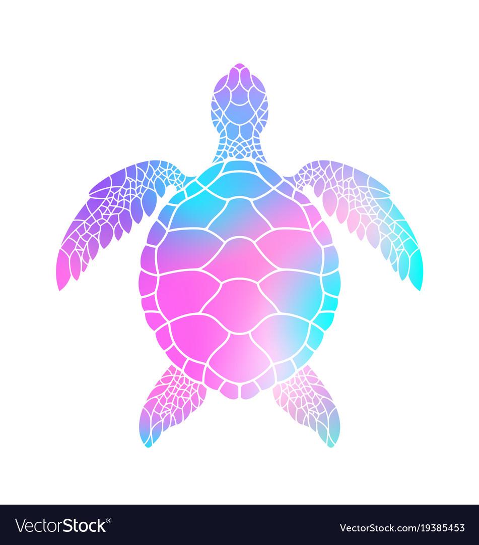 - Colorful Turtle Royalty Free Vector Image - VectorStock