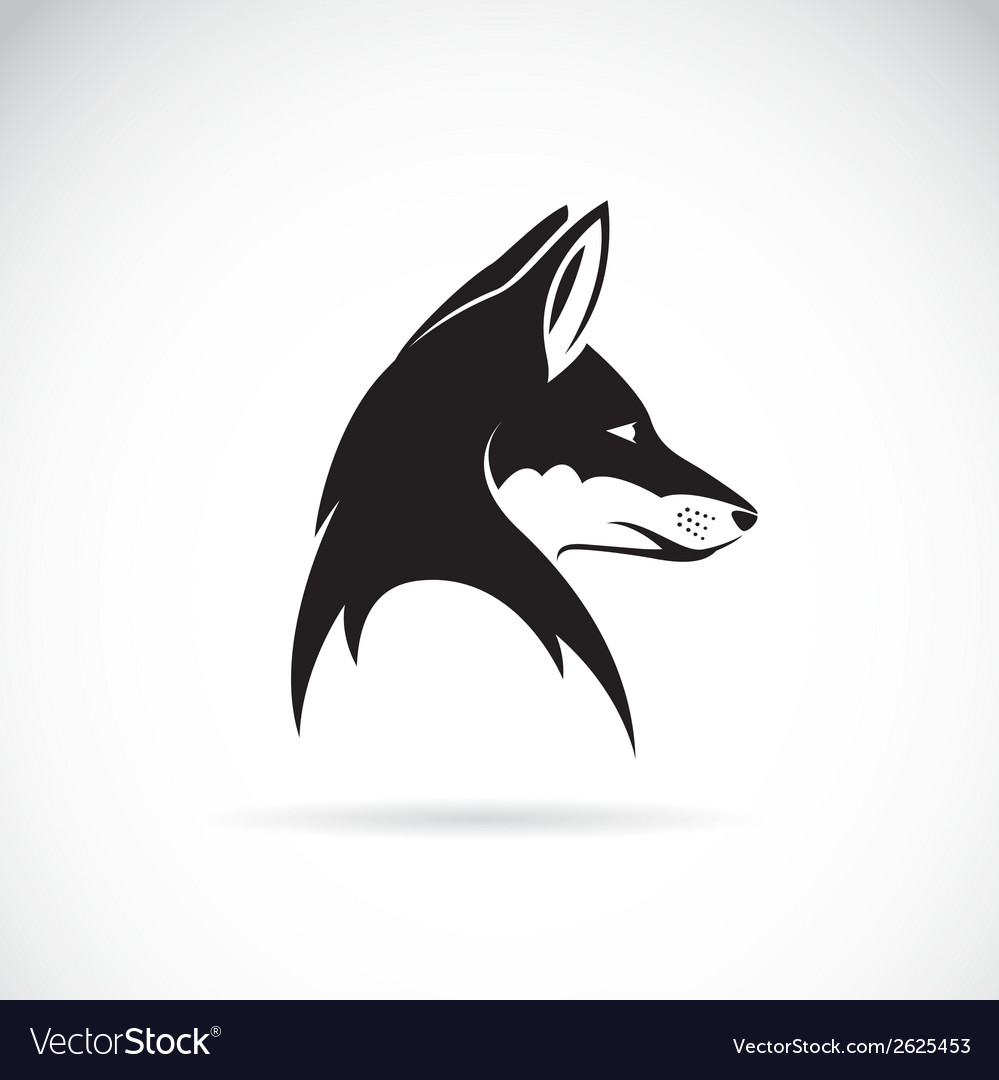 Image of an fox head