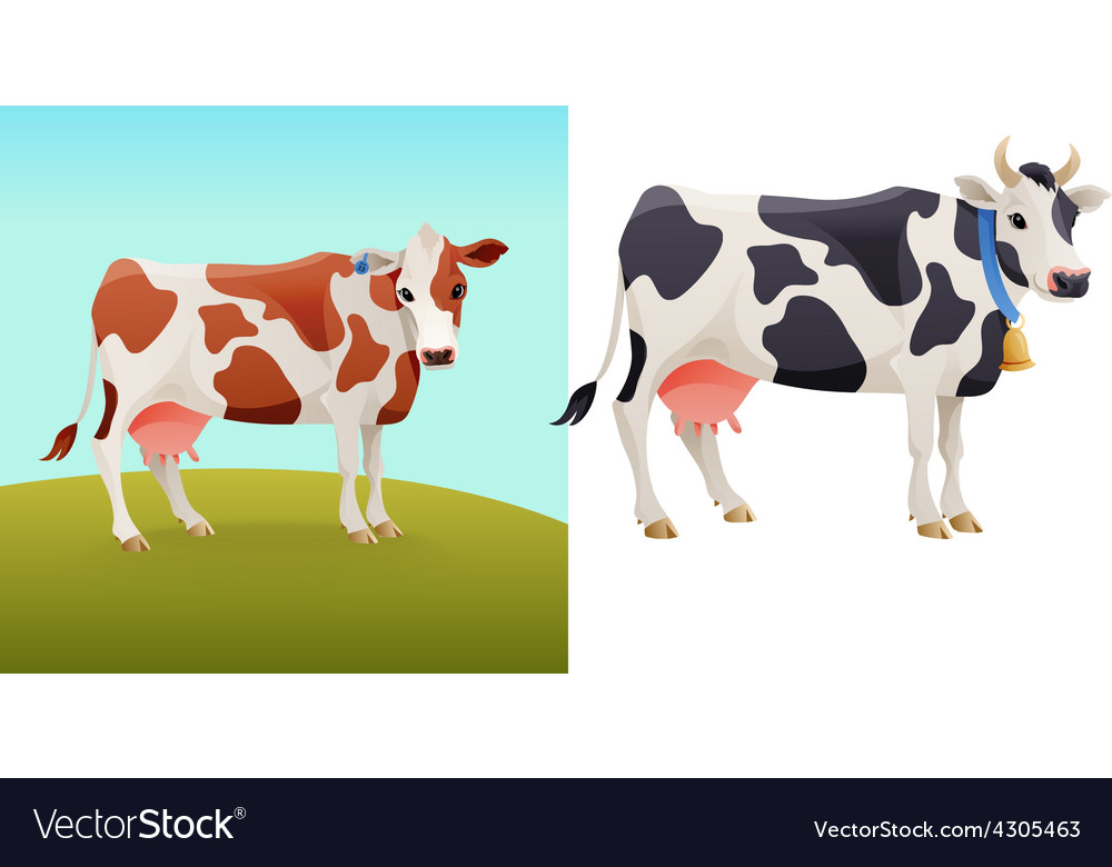 Brown and white spotted cow