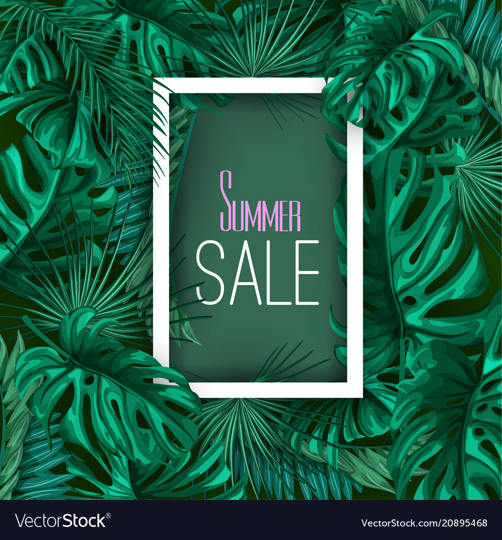 Tropical exotic leaves summer sale banner vector image