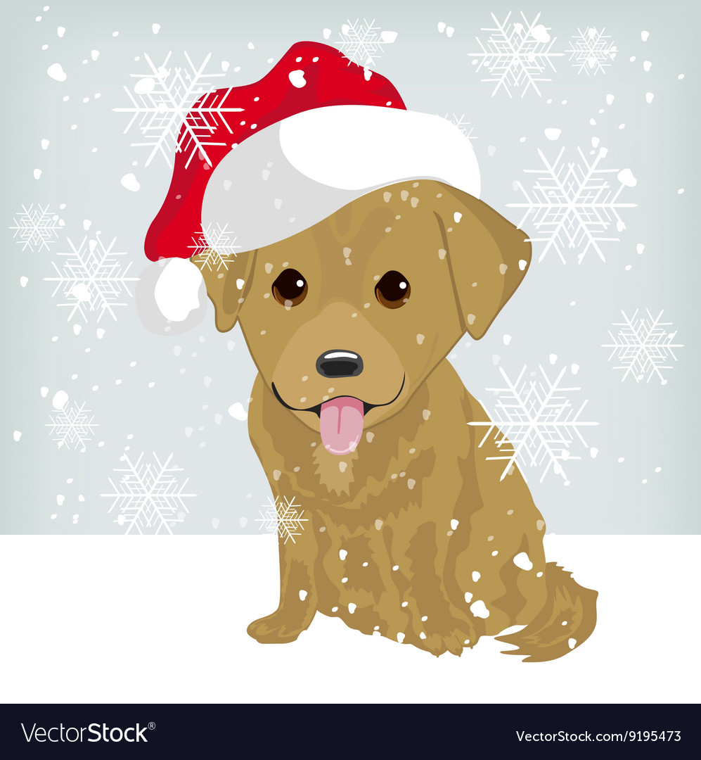 Cute labrador puppy in a Santa Claus hat
