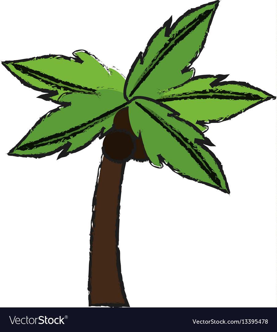 Palm tree icon image