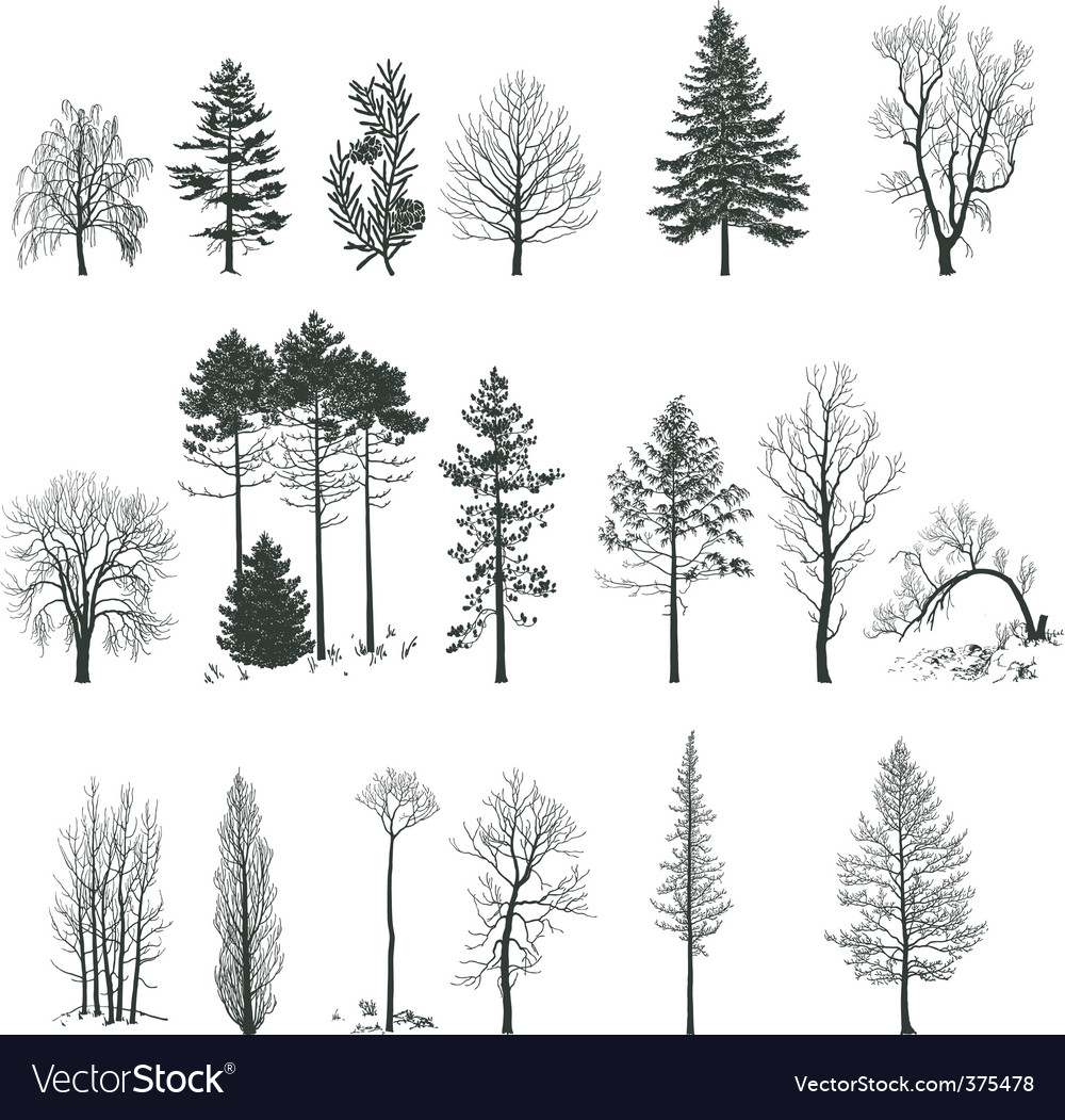Tree silhouette collection vector image