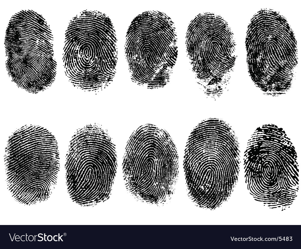 10 fingerprints vector image