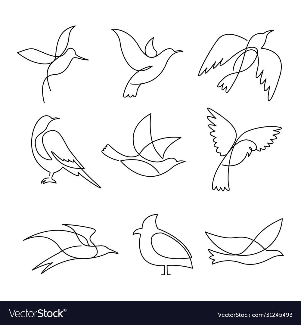 Birds continuous line drawing elements set