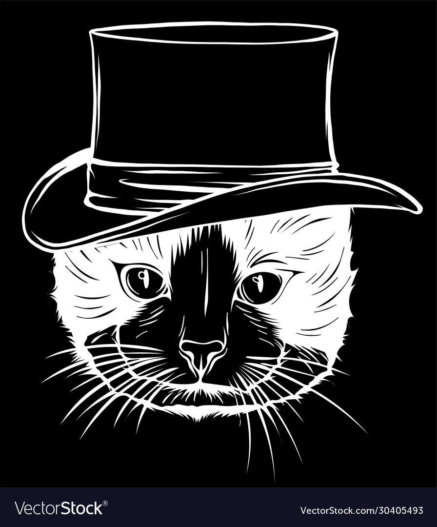 Cat gentleman in a hat in black background