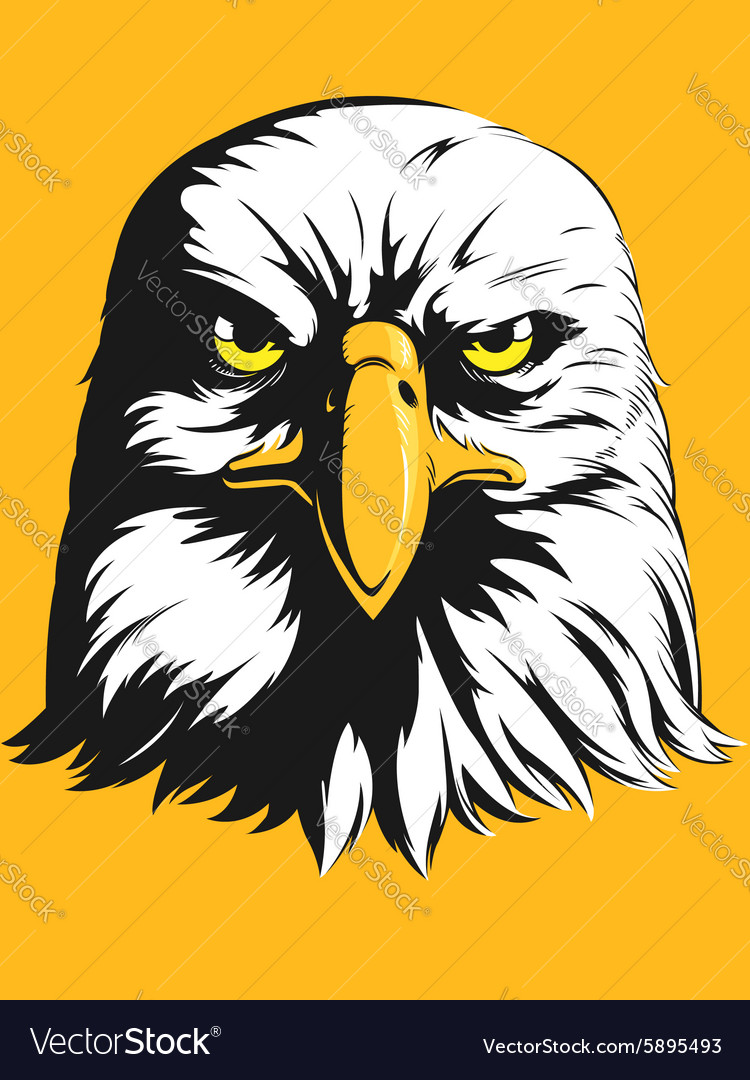 Eagle Head Front View Cartoon vector image