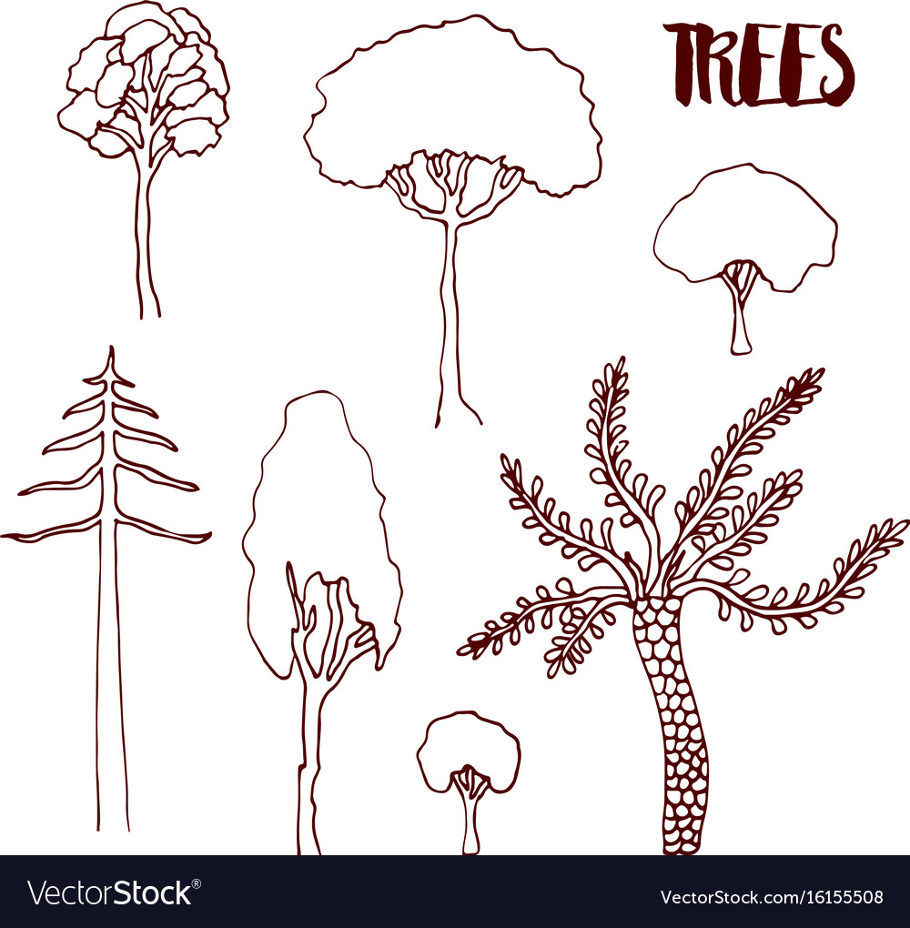 Hand sketch trees set hand drawn isolated