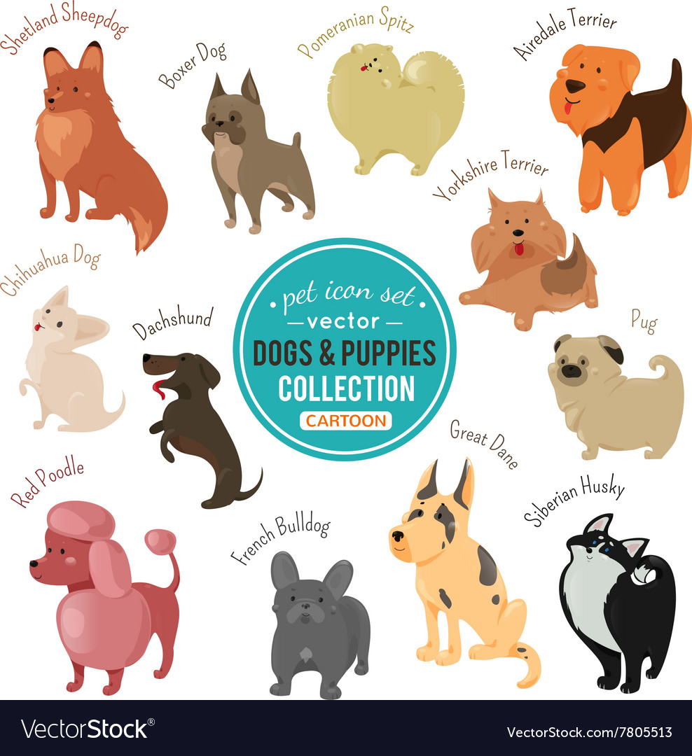 Dogs and puppies depicting different fur