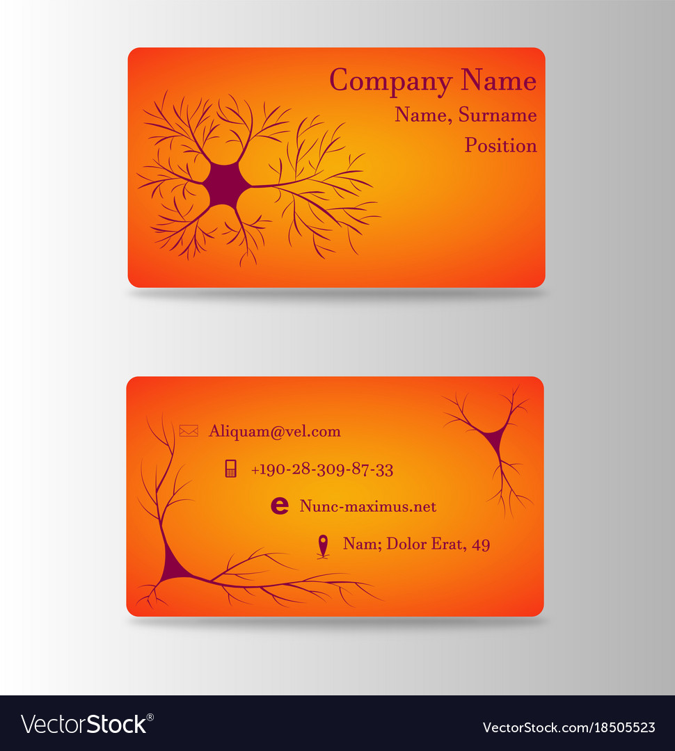 neurosurgeon or brain doctor business card vector image - Doctor Business Card