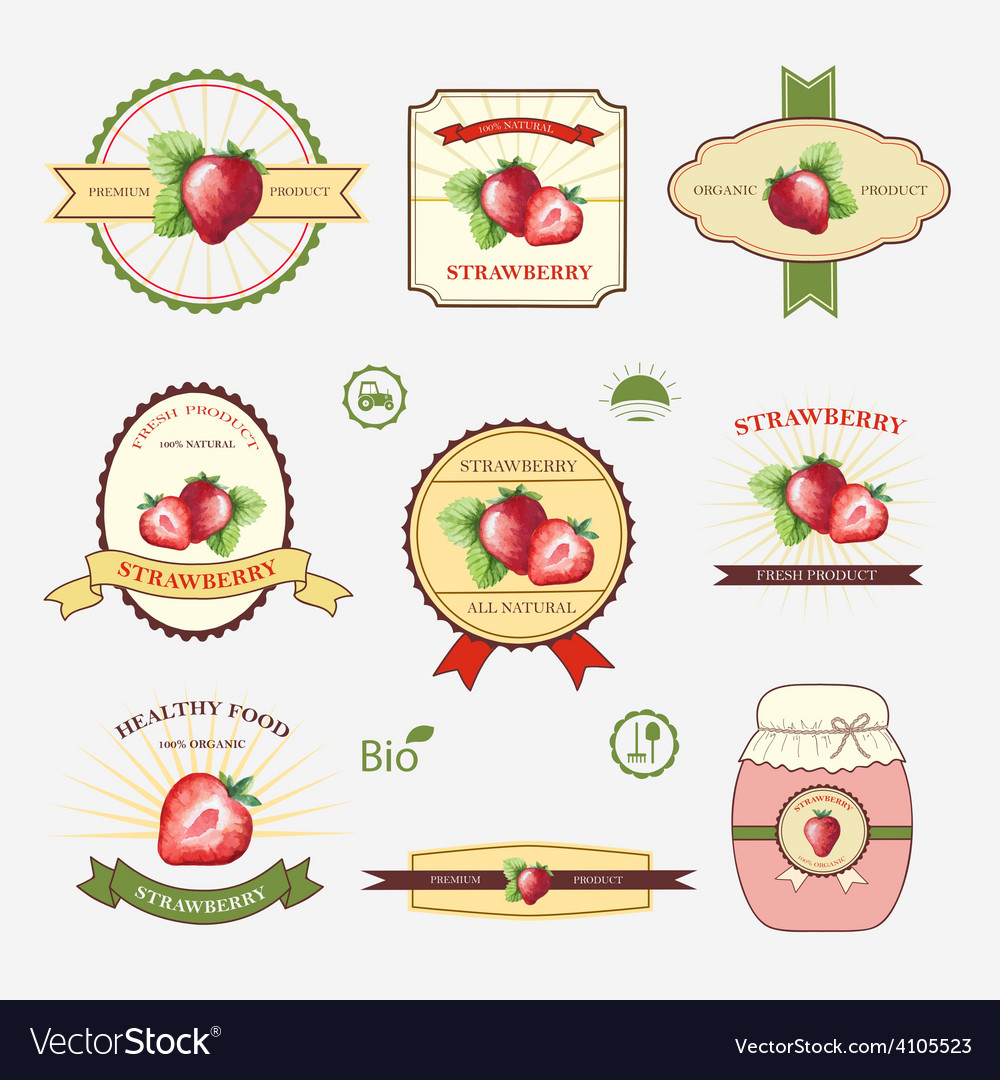 Strawberry set of label design and templates Vector Image