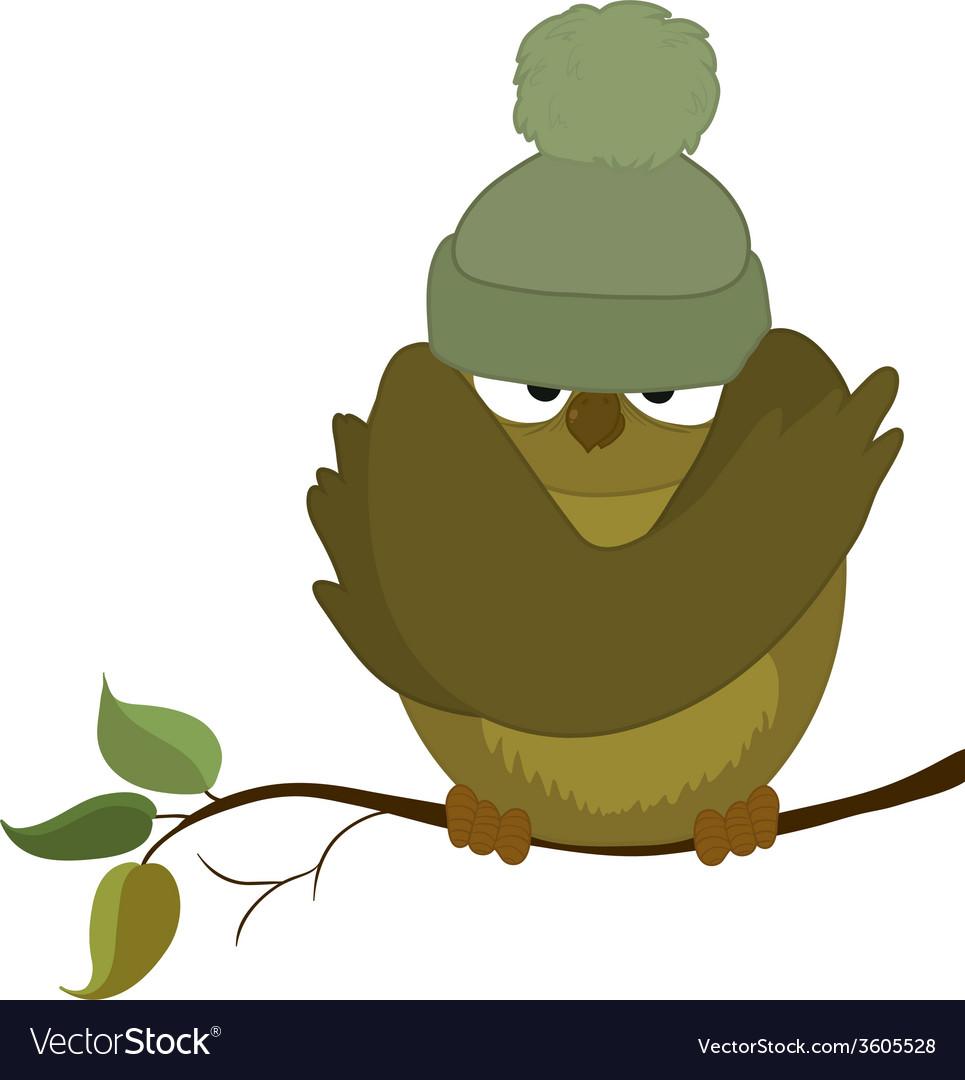 Sparrow cold autumn