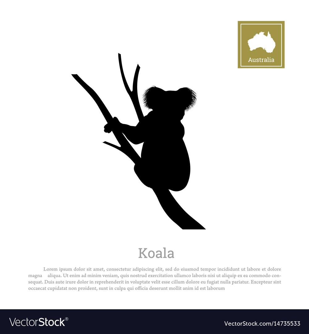 Black silhouette koala on white background