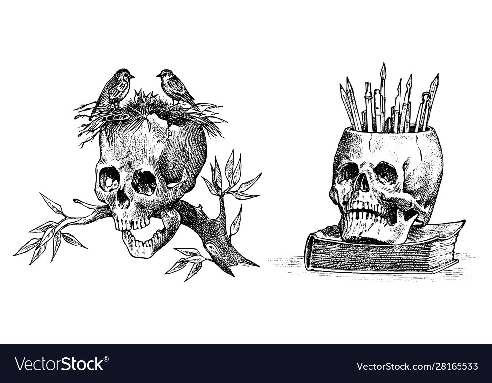 Human skull with birds and pencils retro old