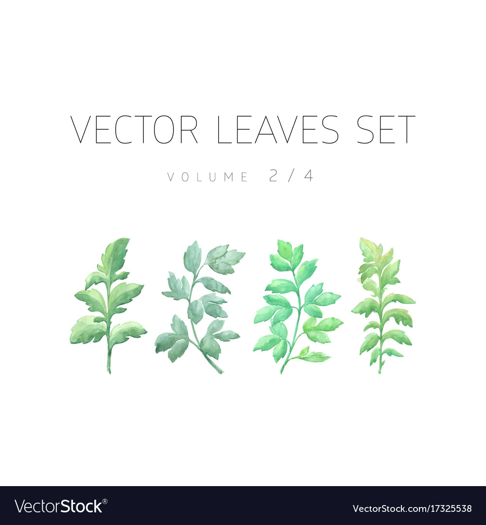 Bright watercolor set of leaf