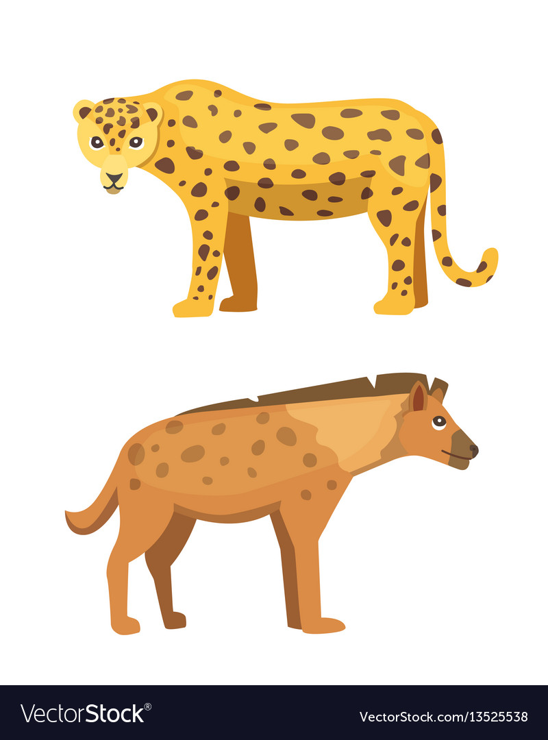 Cute jaguar and hyena stands