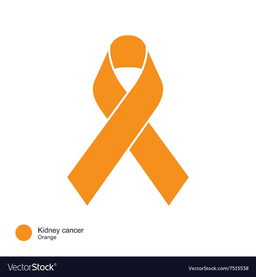 Kidney Cancer Ribbon Royalty Free Vector Image