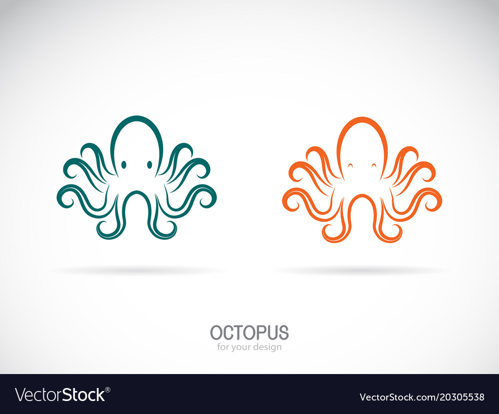 Octopus design on a white background aquatic