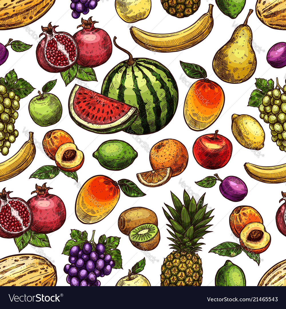 Sketch seamless pattern exotic fruits
