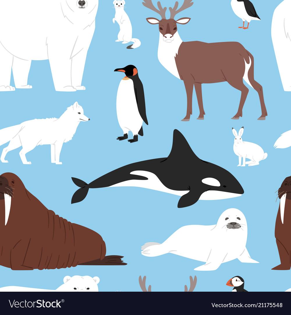 Arctic animals cartoon polar bear or