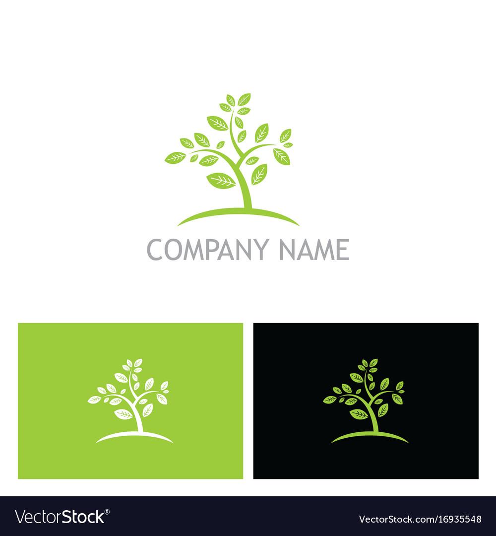 Plant tree organic botany nature logo