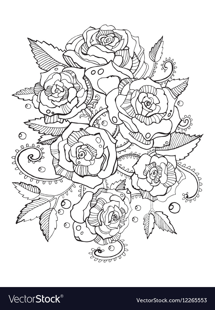 Roses coloring book for adults Royalty Free Vector Image