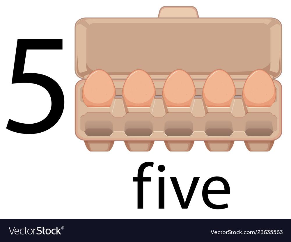 Five egg in carton