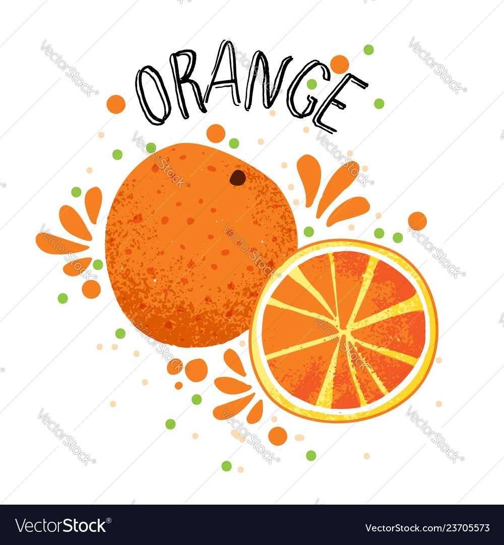 Hand draw orange slice of