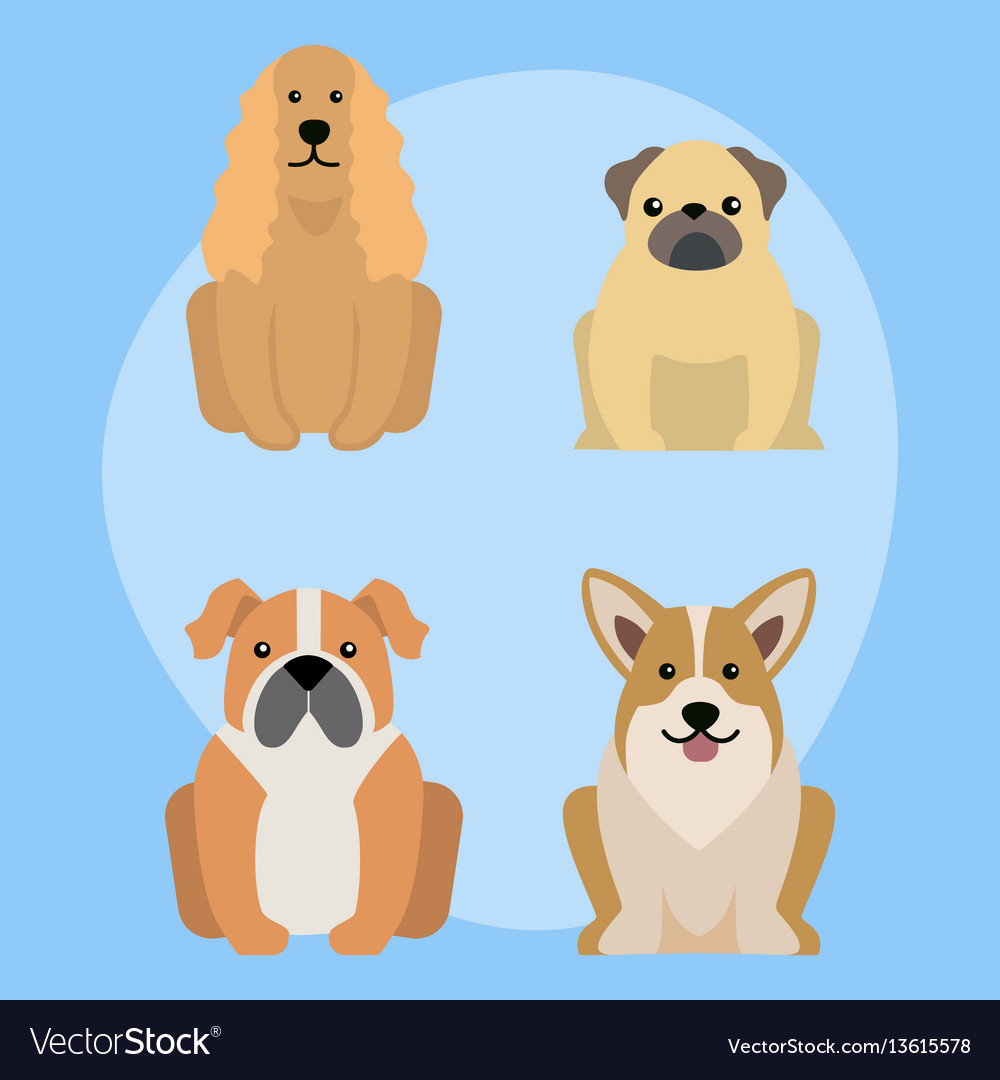 Funny cartoon dog character bread in vector image