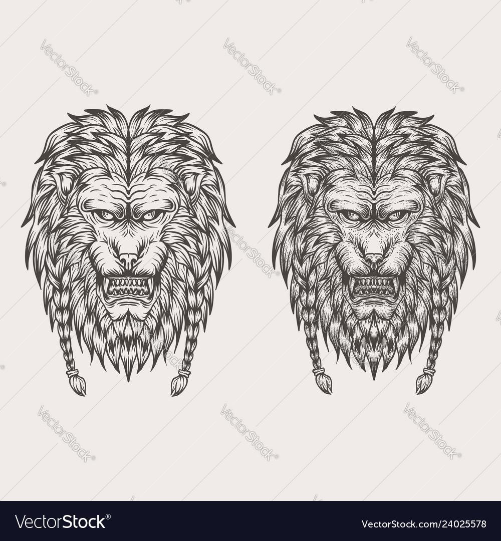 Lion hand draw