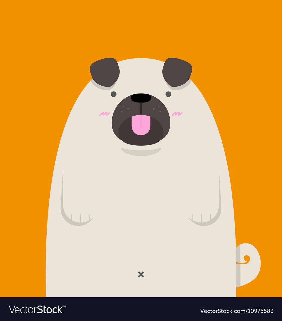 Cute big fat Pug dog