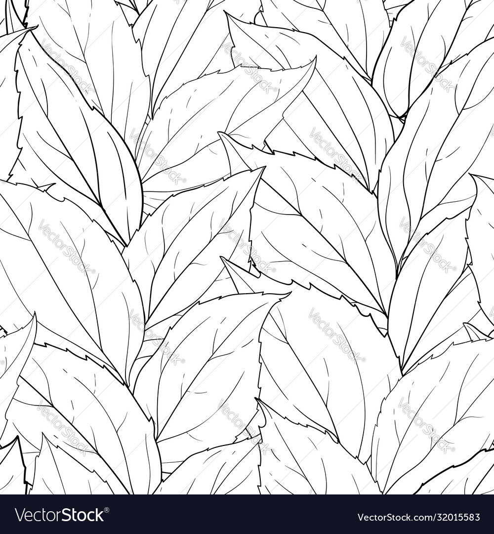 Seamless pattern black and white leaves
