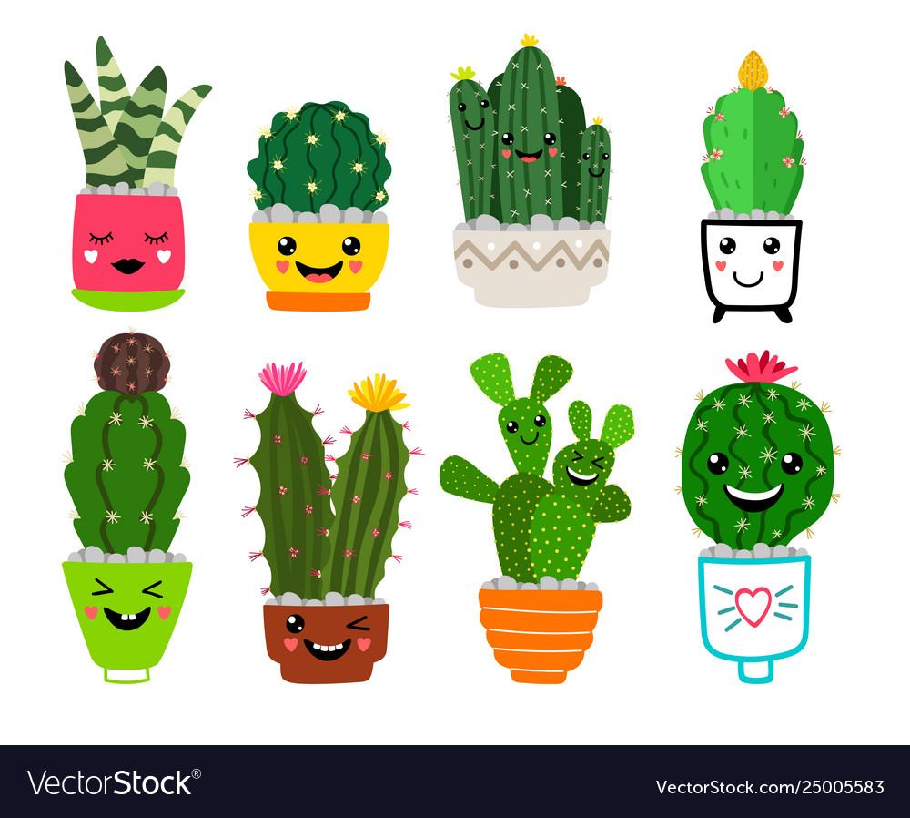 Smiling cacti in pots