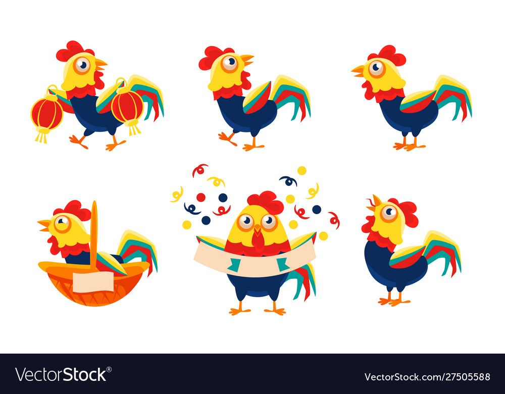 Collection roosters with bright plumage in