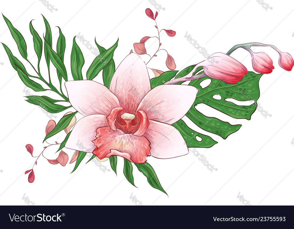 Exotic tropical floral bouquets paphiopedilum