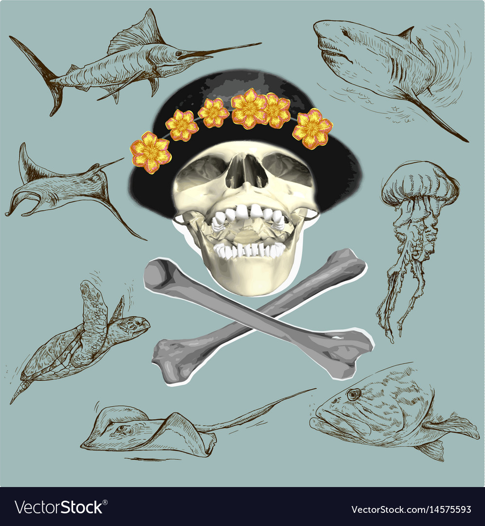 Pirate skull and underwater life - hand drawn vector image