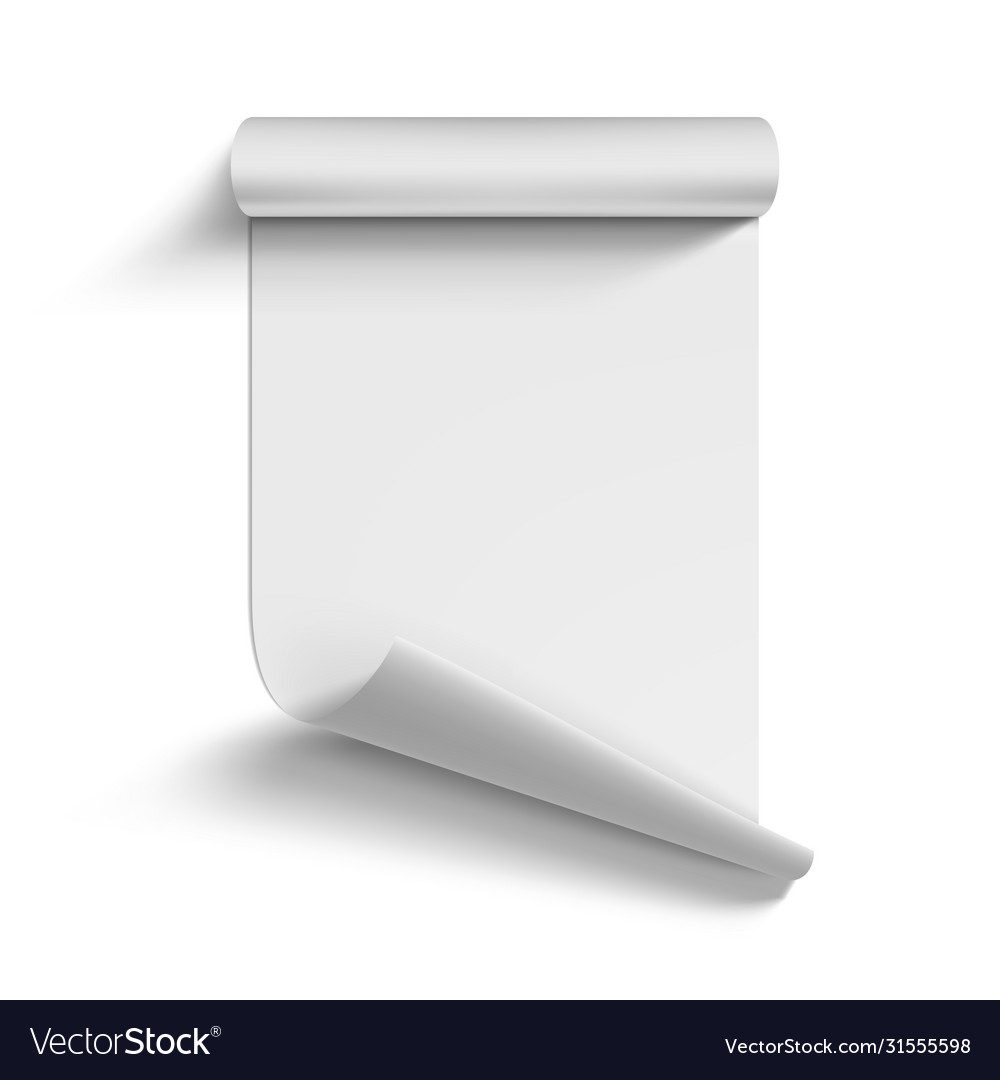 Roll blank white paper curled on corner