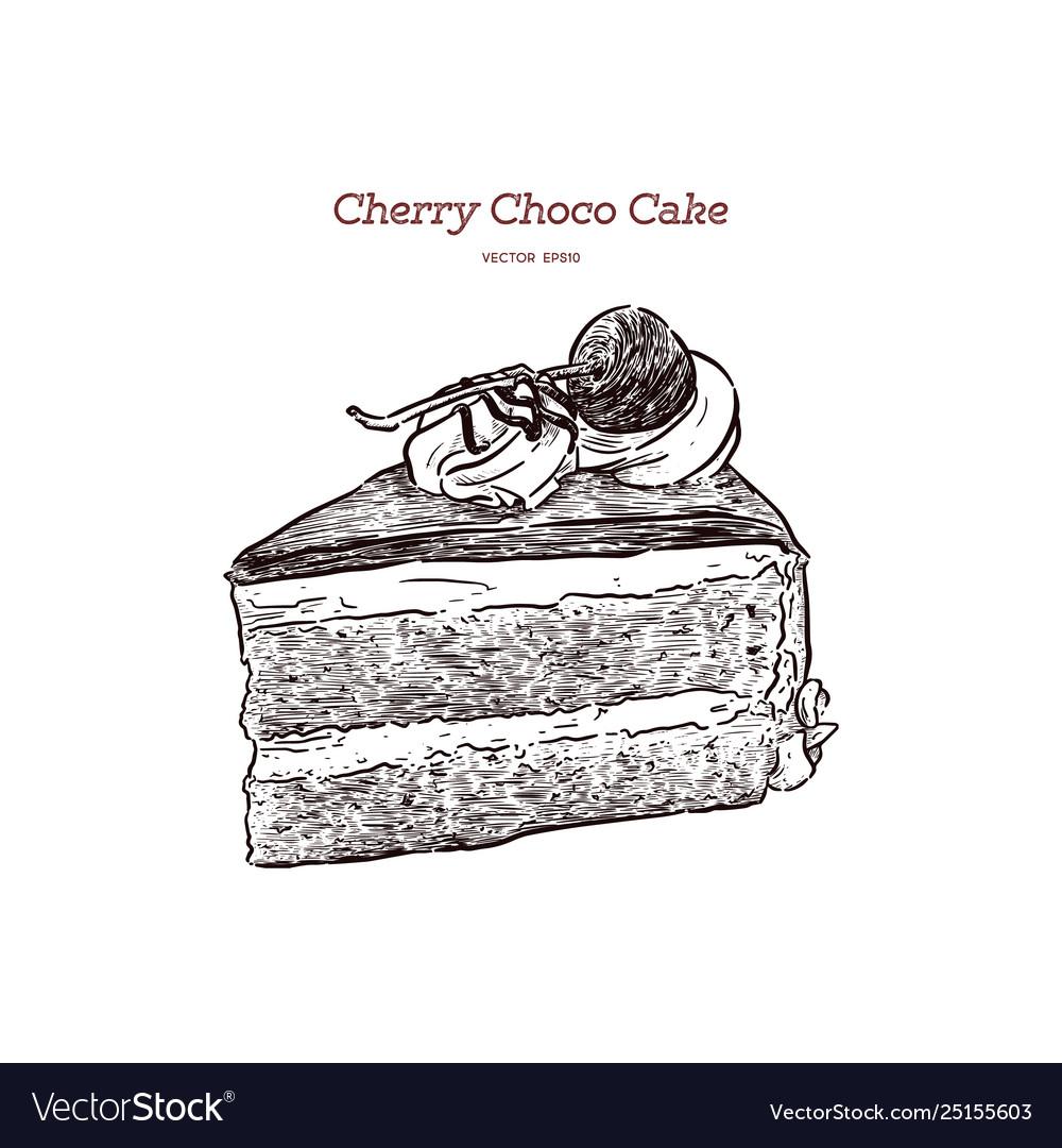Chocolate cherry cake hand draw sketch
