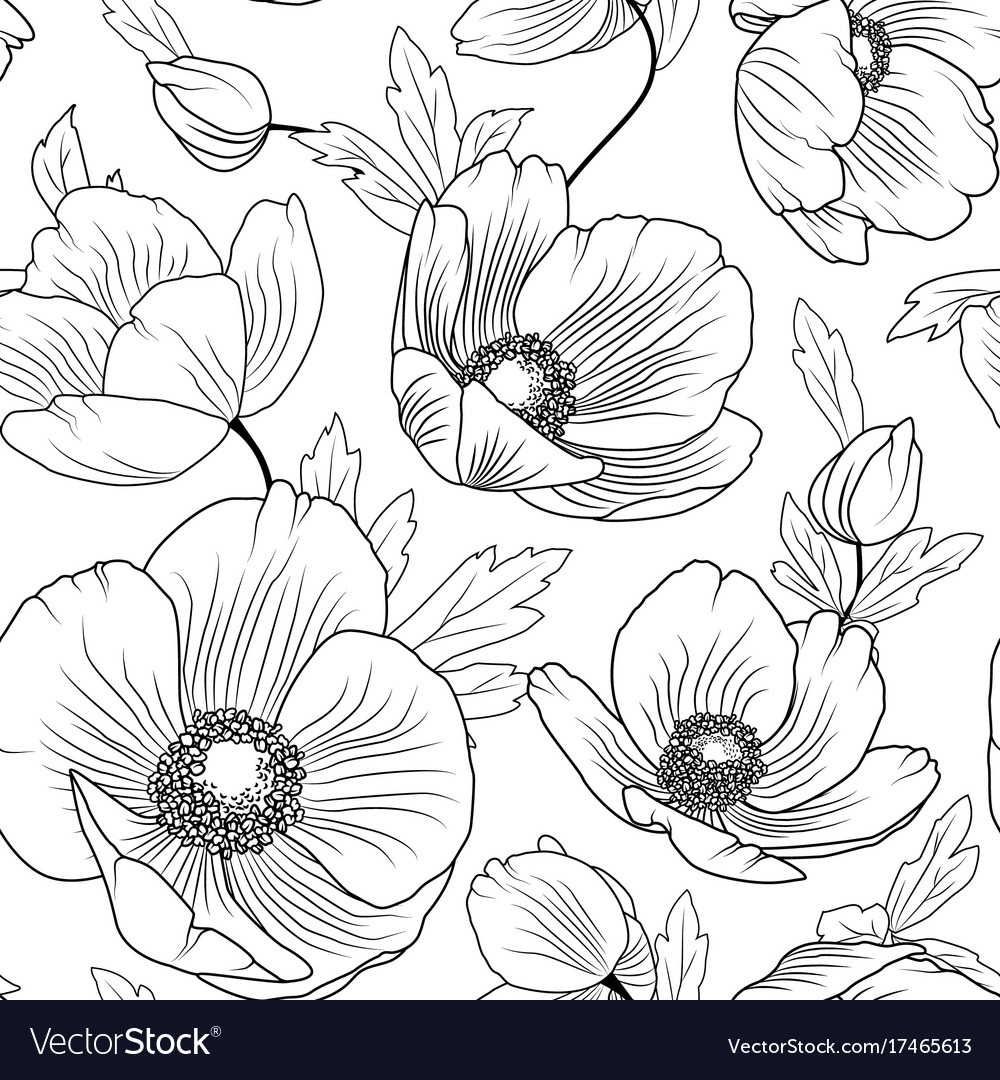 Poppy Flowers Seamless Pattern Texture Black White